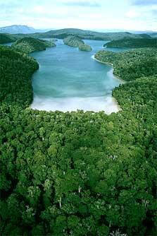 http://www.doc.govt.nz/pagefiles/19822/lake-waikareiti-223.jpg