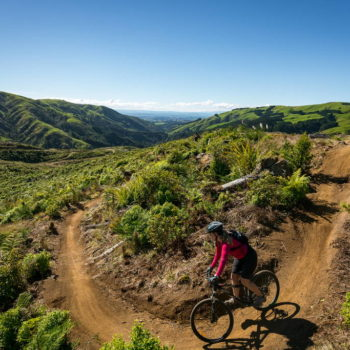 Mountain Biking in Palmerston North
