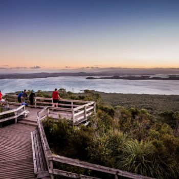 Top 10 Natural Attractions in Auckland