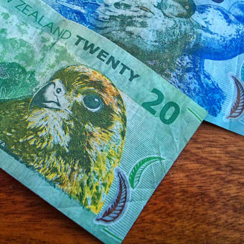 New Zealand Currency: The New Zealand Dollar