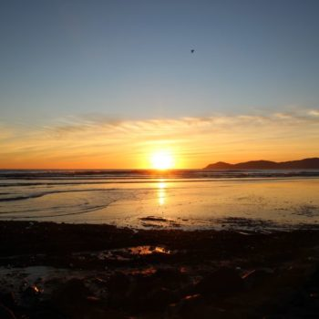8 Excellent Things to Do in Paraparaumu