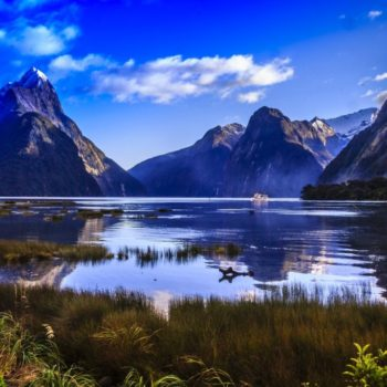 10 Essential New Zealand Travel Tips