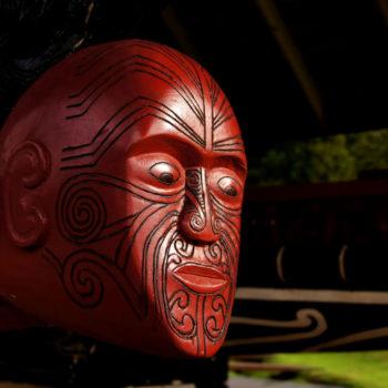 Backpacker's Guide to the Maori Language: te reo Maori