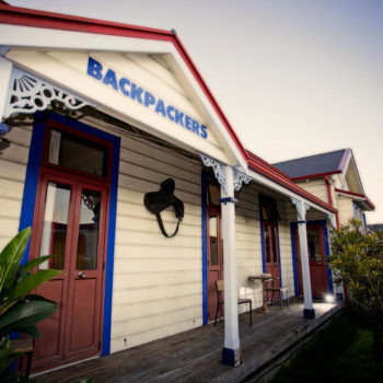 8 Best Backpacker Hostels in Napier and Hastings