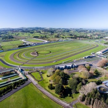 5 Fun Things to Do in Pukekohe