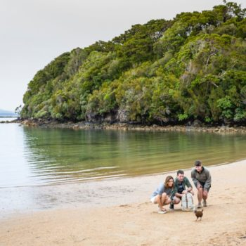 10 Incredible Things to Do on Stewart Island