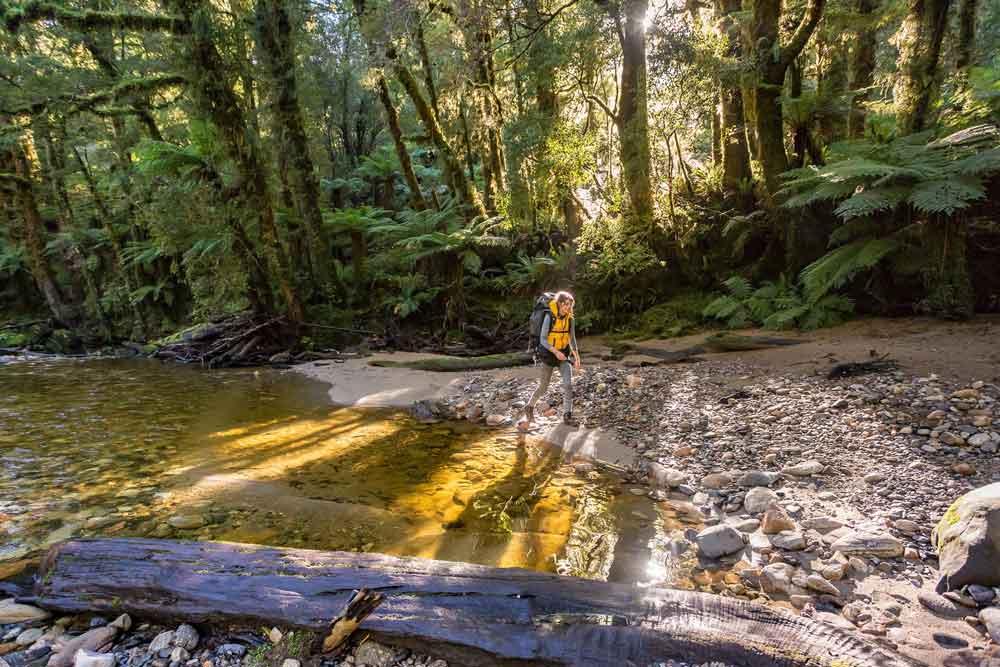 Jason Blair - Tourism NZ