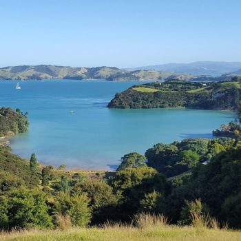 9 Glorious Things to Do on Waiheke Island