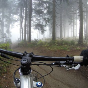 6 Must-Do Bike Trails in Whanganui