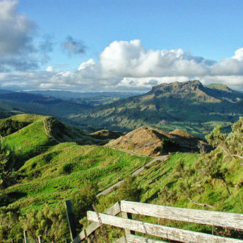 8 Walks in Northern Hawke's Bay You Can't Miss
