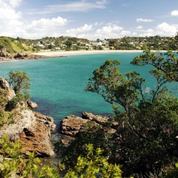 7 Wonderful Walks on Waiheke Island