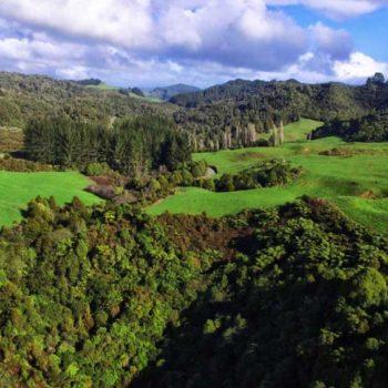 5 Best Walks in Waitomo