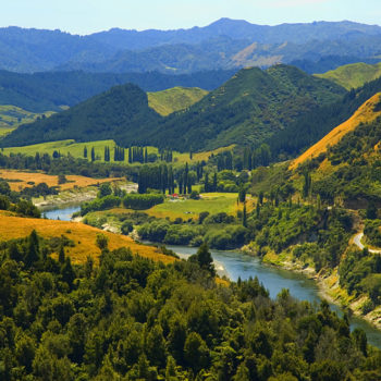 9 Must-Do Stops on the Whanganui River Road