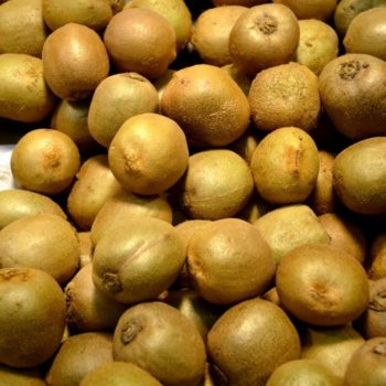 1 Kiwifruit, 2 Kiwifruit... What it's Really Like to Work in a Kiwifruit Packhouse