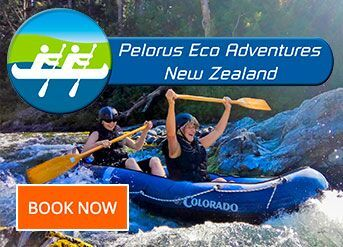 Pelorus Eco Adventures