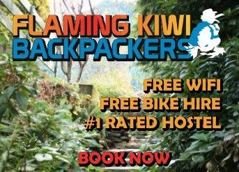 Flaming Kiwi Backpackers