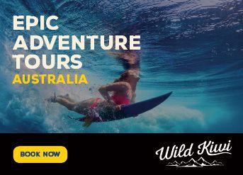 Wild Kiwi Australia