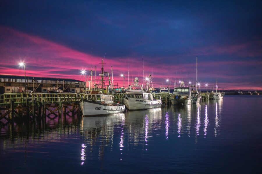 5 Best Things to Do in Bluff