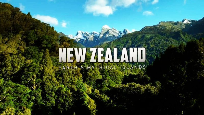 10 Ways to Experience New Zealand From Home