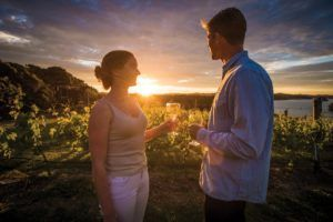 The Honeymoon Guide to the Bay of Islands