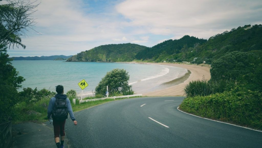 The Guide to the Bay of Islands on a Budget