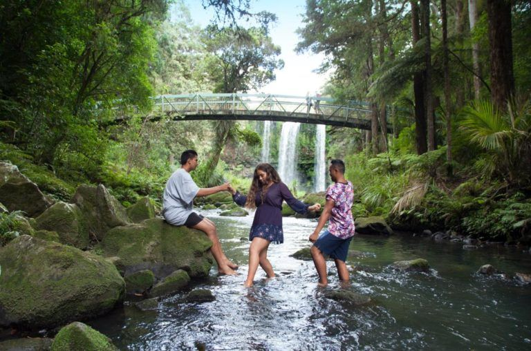 10 Things to Do in Whangarei with Kids