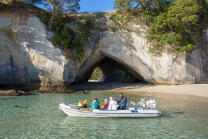 10 Best Things to Do in the Coromandel