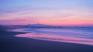 The Honeymoon Guide to New Plymouth