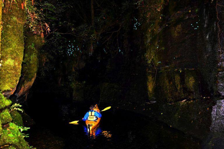 10 Best Things to Do in Tauranga