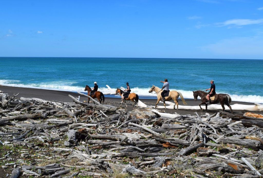 The Luxury Guide to Gisborne