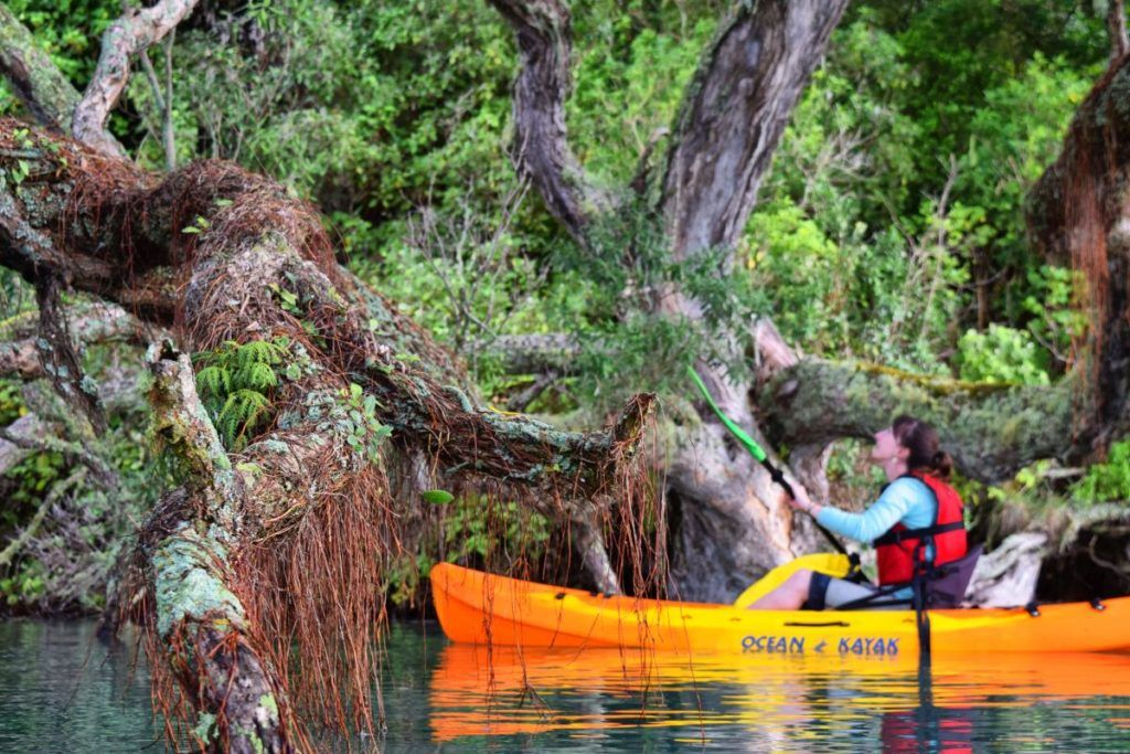 10 Things to Do in Whakatane with Kids