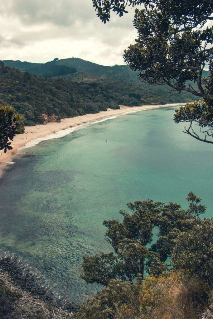 The Complete Travel Guide to the Coromandel
