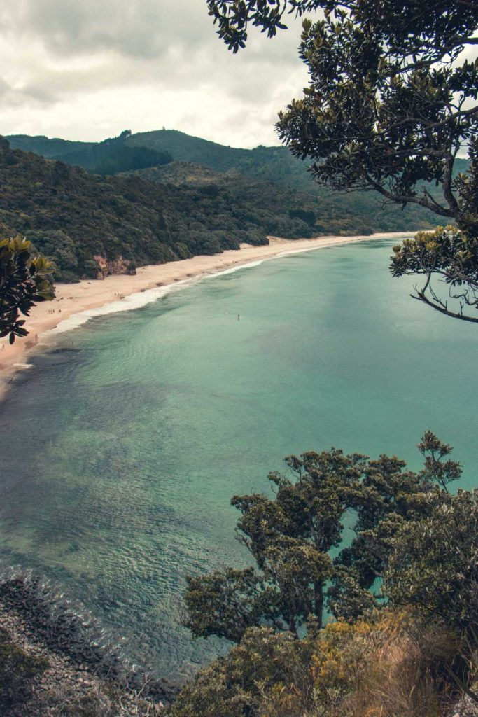 10 Things to Do in the Coromandel with Kids