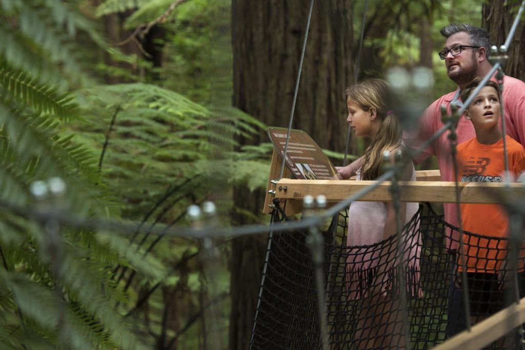 The Guide to Rotorua for Families