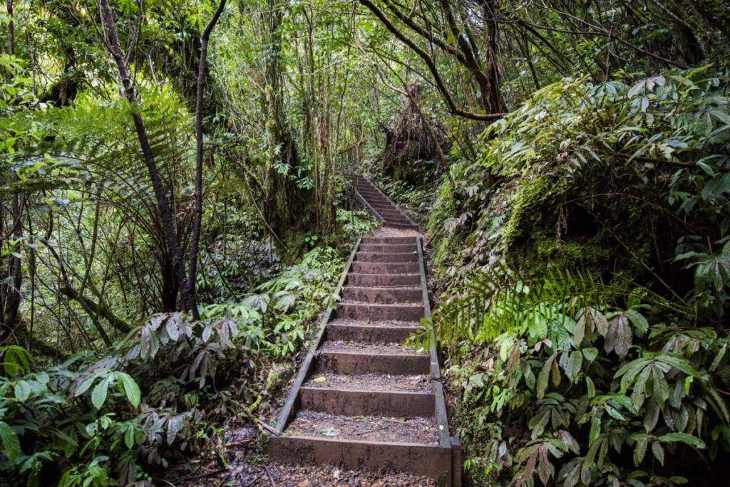 10 Waitomo Must-Dos