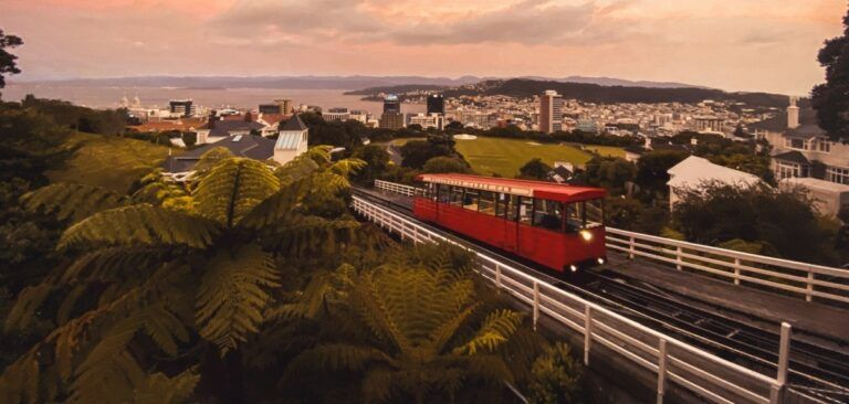 The Complete Travel Guide to Wellington