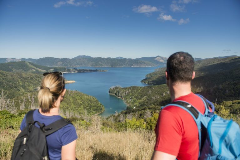 The Complete Guide to Picton