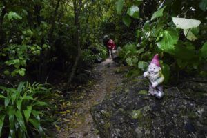 The Guide to Takaka for Families