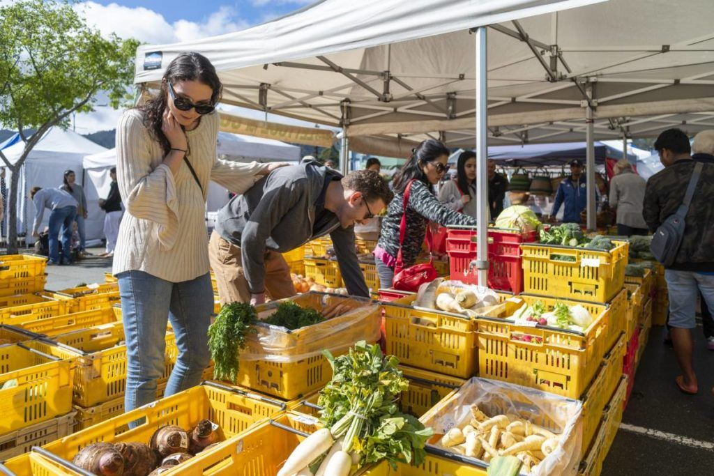 7 Things to Do in Takaka for Foodies