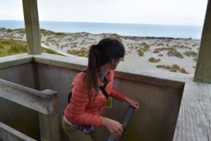 The Guide to Haast on a Budget