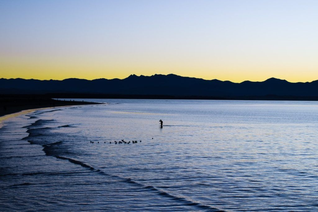10 Things to Do in Nelson with Kids