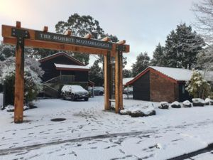 10 Best Budget Accommodation in Ohakune