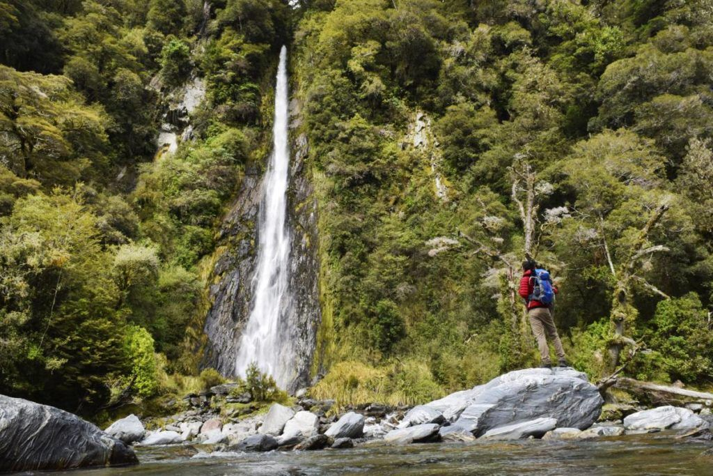 8 Things to Do in Haast with Kids