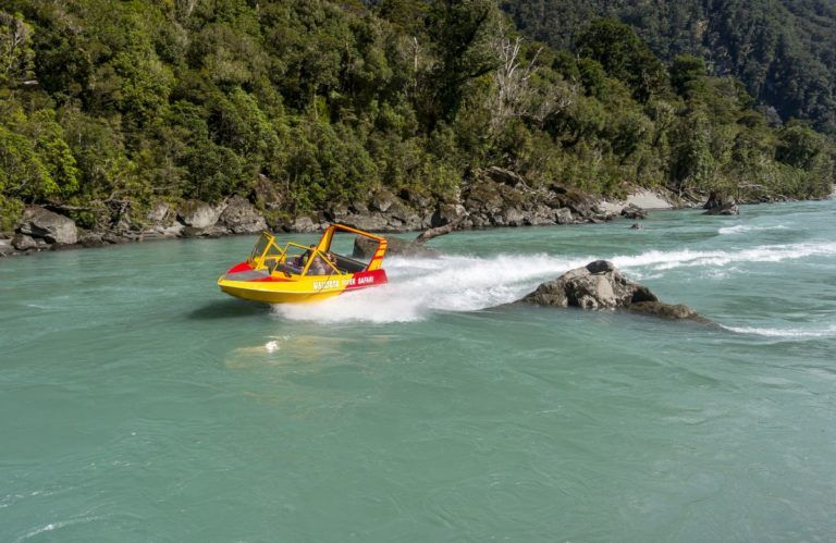 The Guide to Haast for Families
