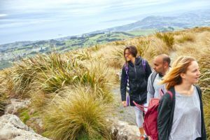 The Guide to Dunedin on a Budget