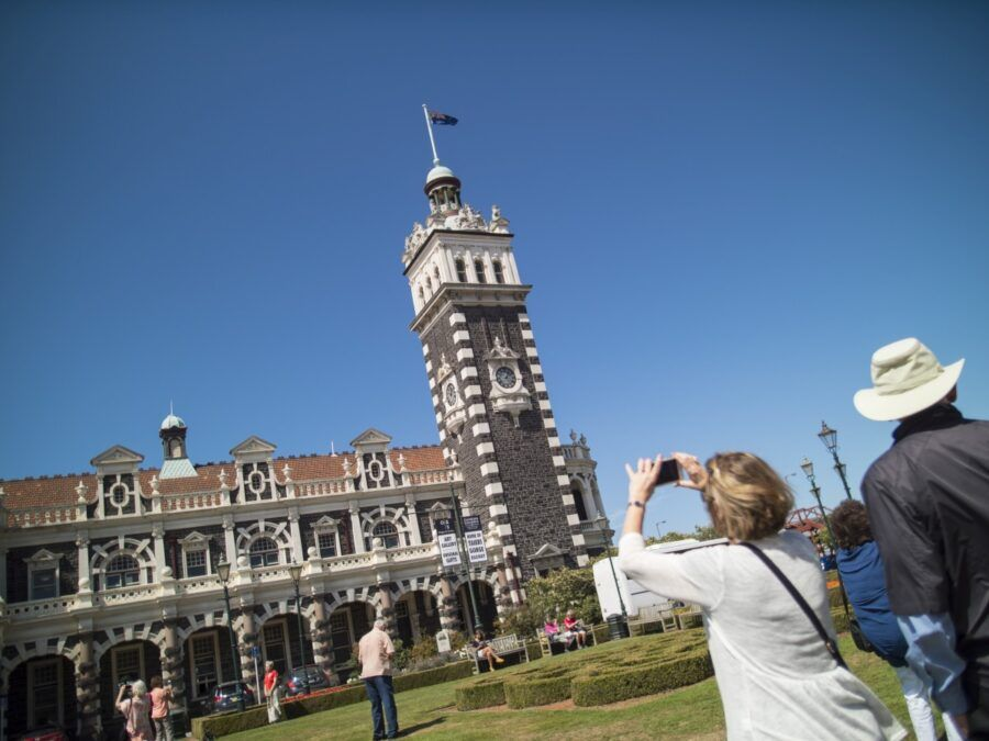10 Best Things to Do in Dunedin