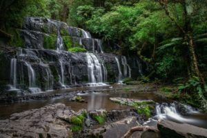 The Honeymoon Guide to The Catlins