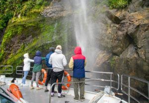 10 Things to Do in Milford Sound with Kids