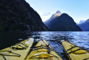 10 Amazing Things to Do in Milford Sound