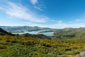 10 Romantic Activities in Christchurch for Couples